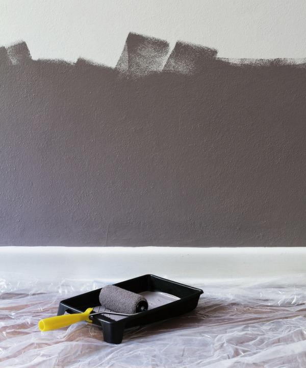 Siapoc L Expert Tropical Peindre Les Murs Au Pistolet Ou